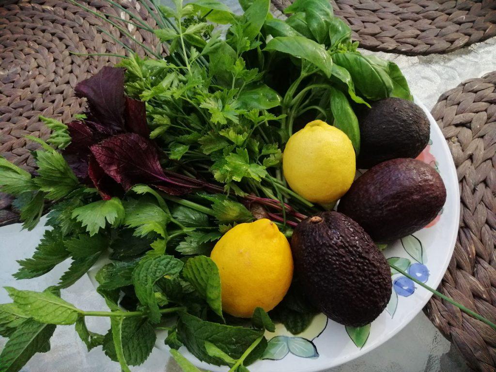 Zöldfűszeres avokádó saláta